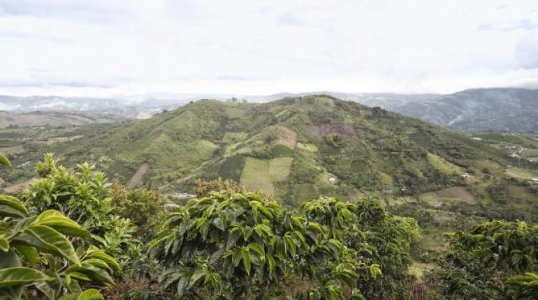 Pequeños volcanes que se mimetizan en el paisaje